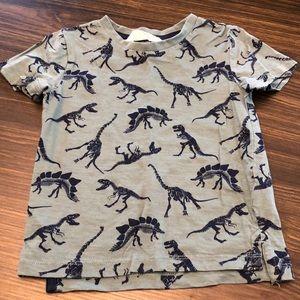Dinosaur T-Shirt Size 2-4